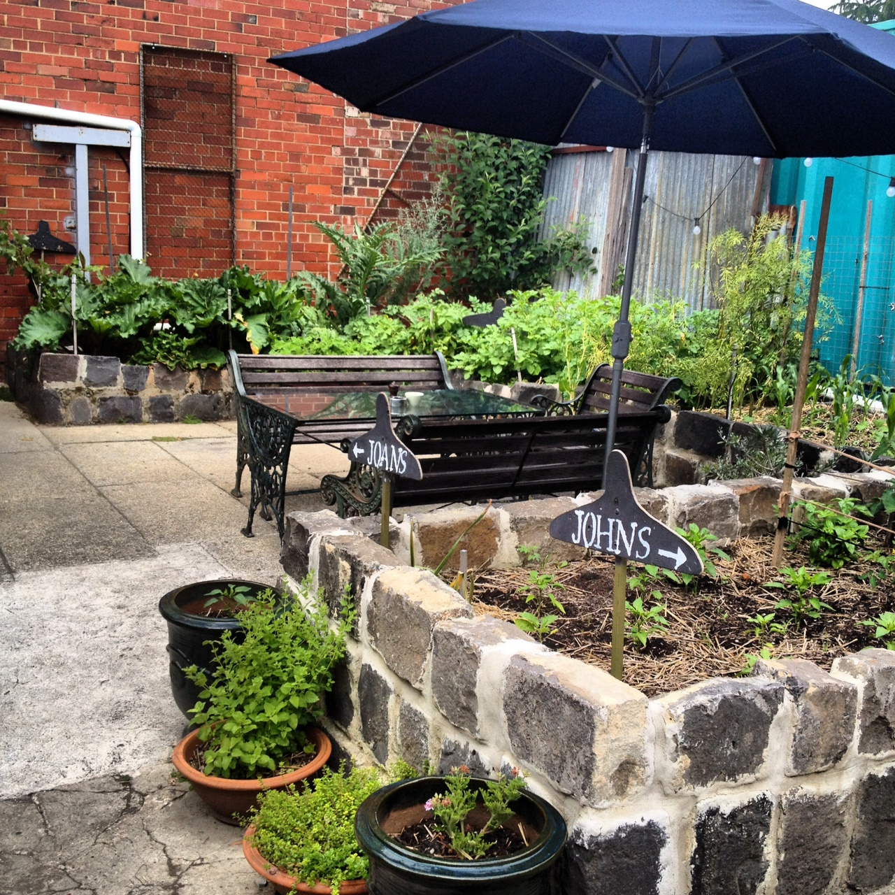 Pope Joan boasts its own little herb and vegetable garden out the back.